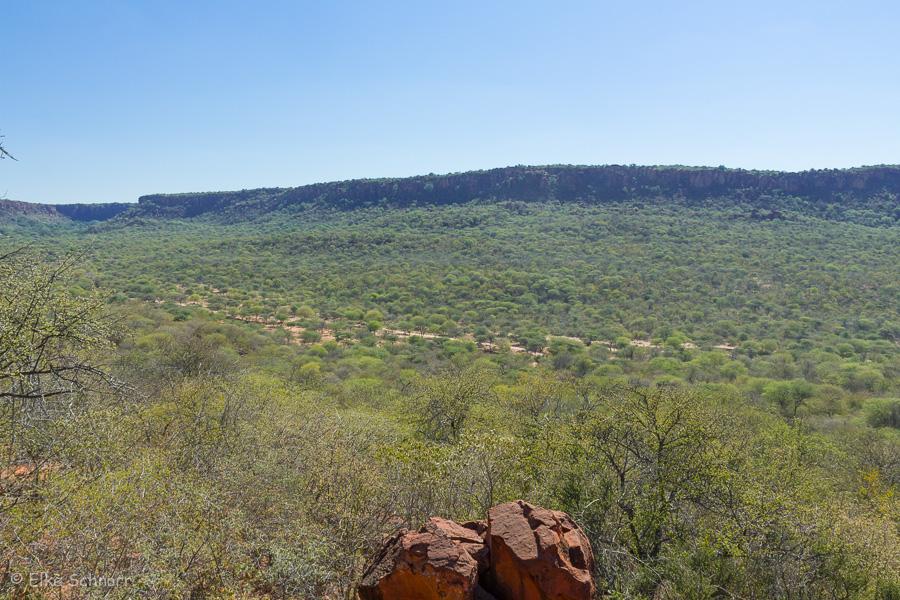 2019-Namibia-03-14.jpg