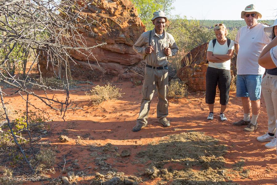 2019-Namibia-04-09.jpg