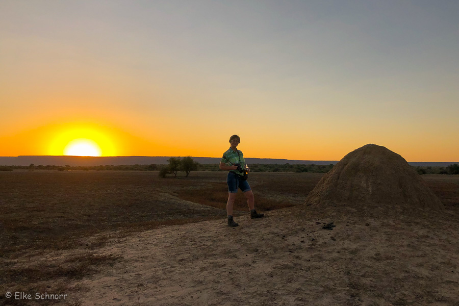 2019-Namibia-04-35.jpg