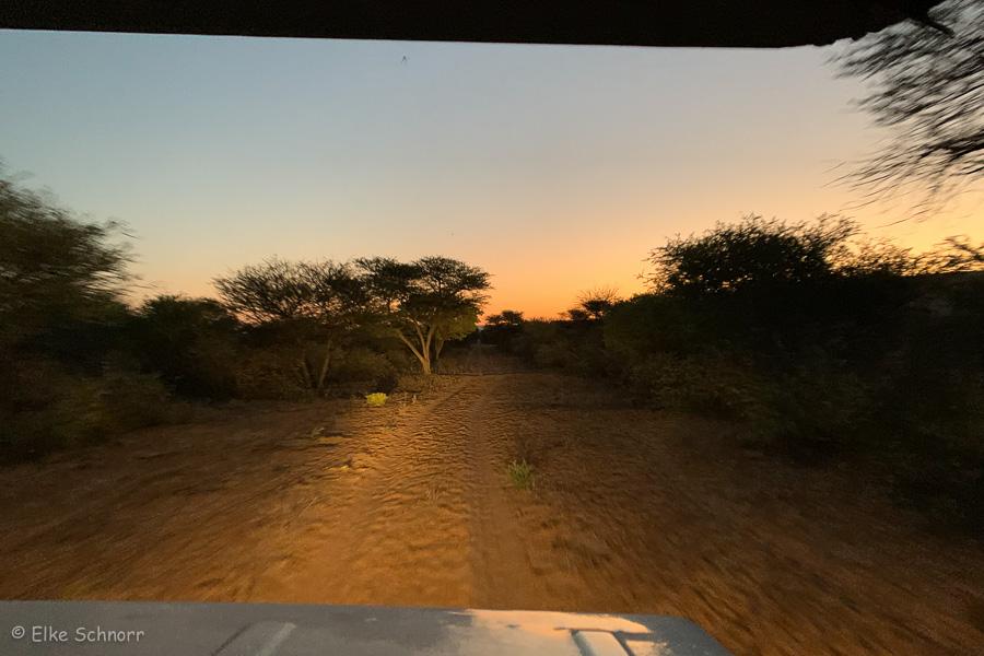 2019-Namibia-04-36.jpg