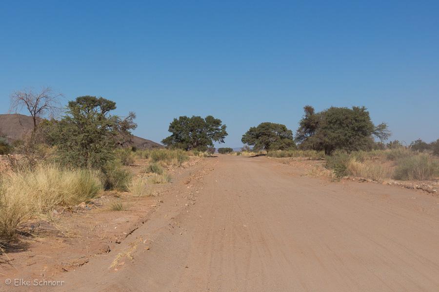 2019-Namibia-24-02.jpg