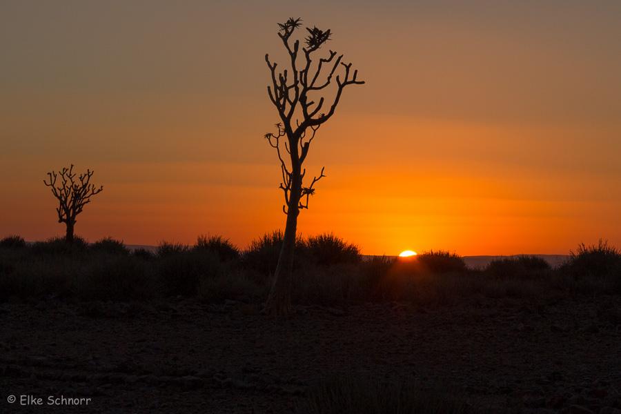 2019-Namibia-24-28.jpg