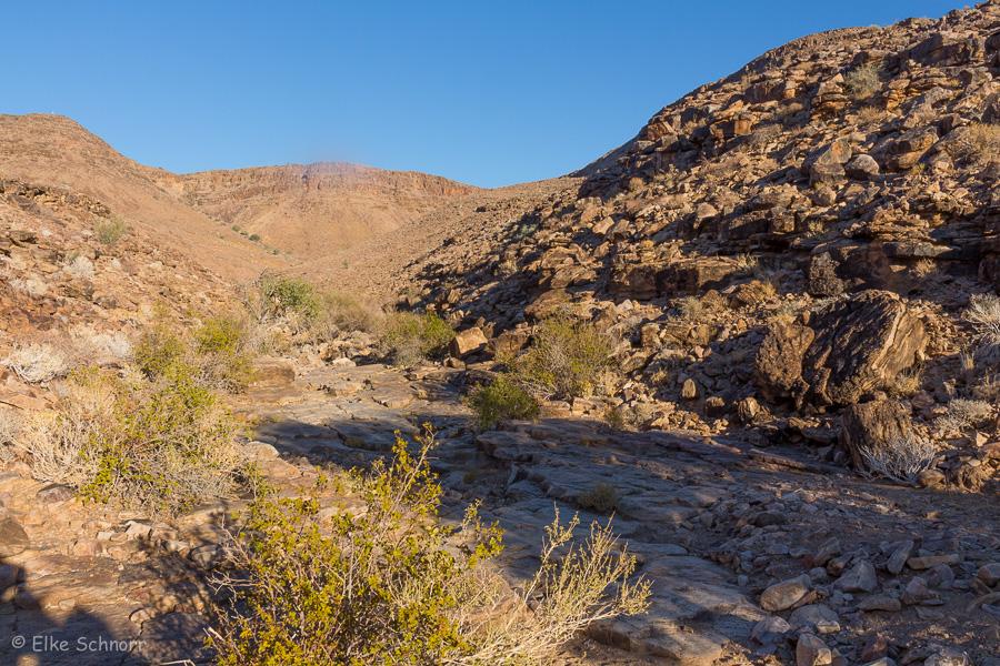 2019-Namibia-25-06.jpg