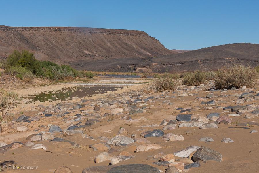 2019-Namibia-25-33.jpg