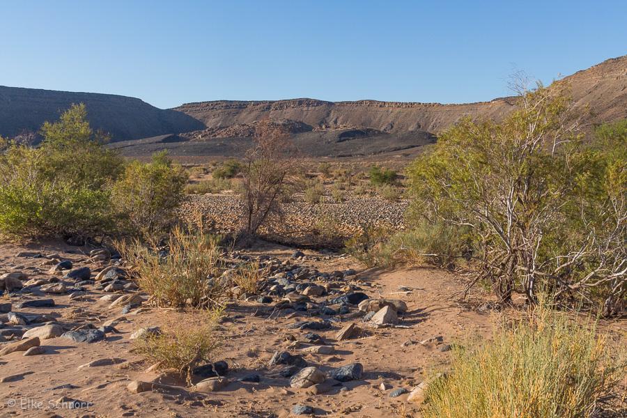 2019-Namibia-26-11.jpg