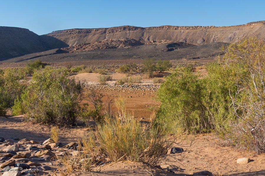 2019-Namibia-26-12.jpg