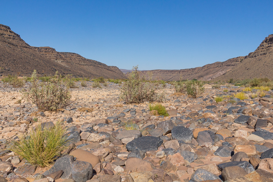 2019-Namibia-26-21.jpg