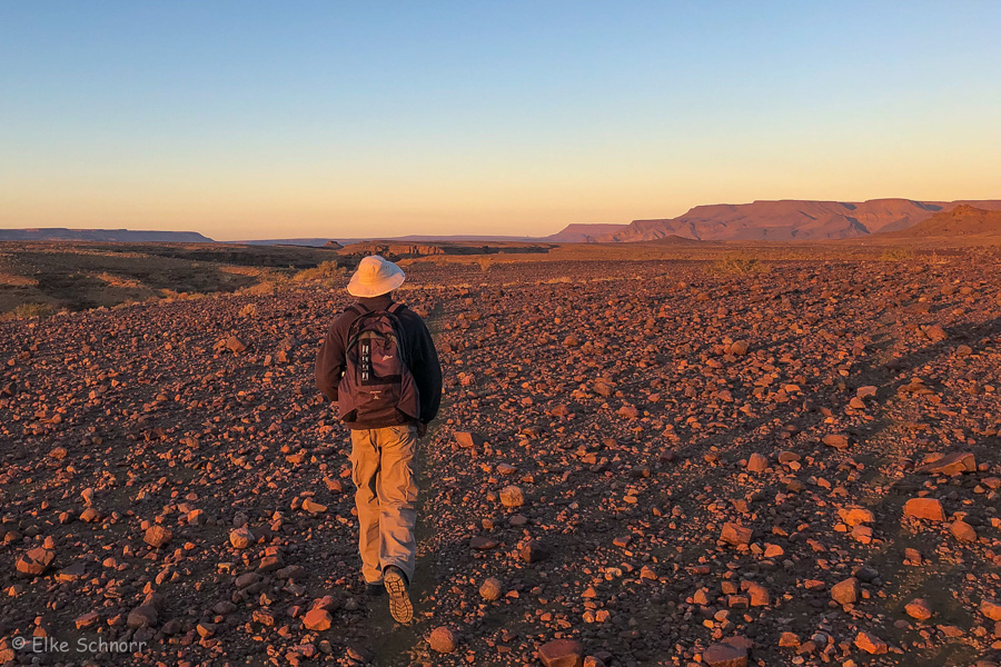 2019-Namibia-27-10.jpg