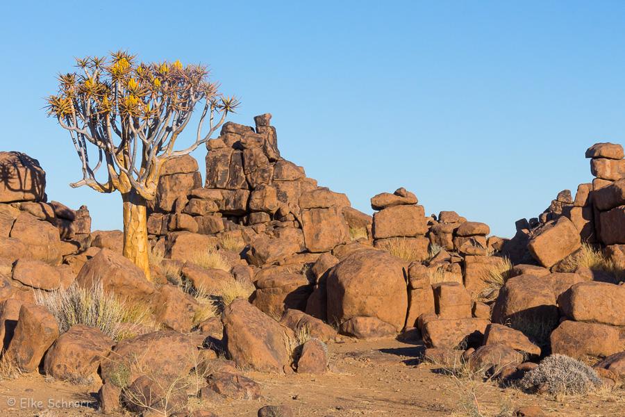 2019-Namibia-27-24.jpg