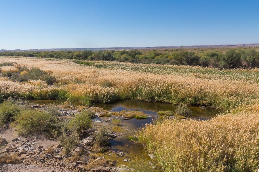 2019-Namibia-28-03.jpg