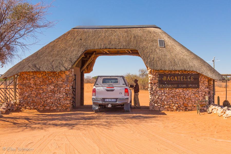 2019-Namibia-28-10.jpg