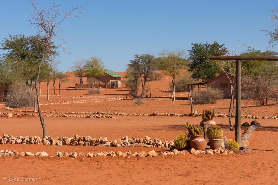 2019-Namibia-28-14.jpg