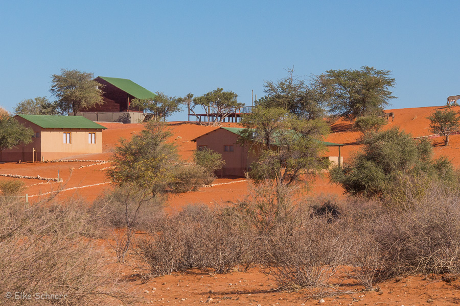 2019-Namibia-28-15.jpg