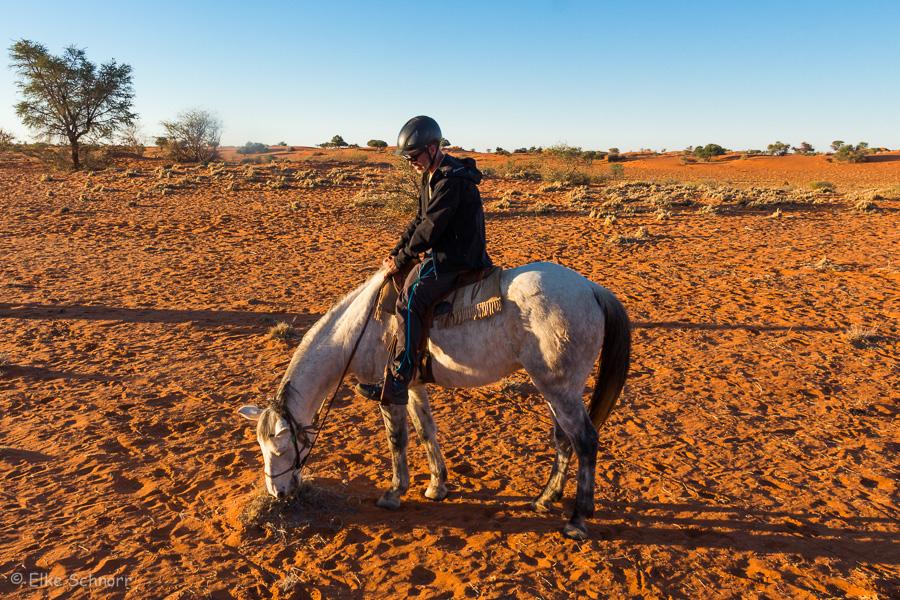2019-Namibia-28-34.jpg