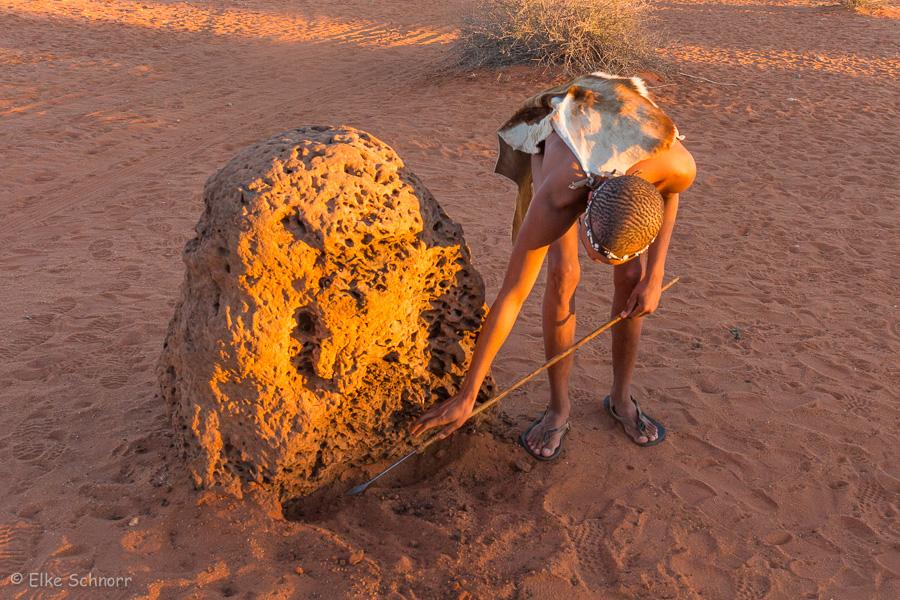 2019-Namibia-29-02.jpg