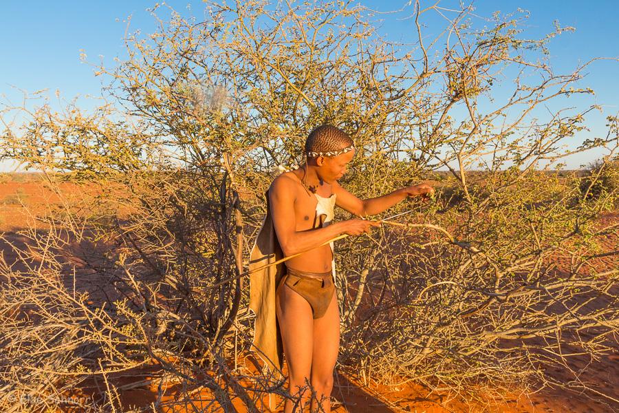 2019-Namibia-29-05.jpg