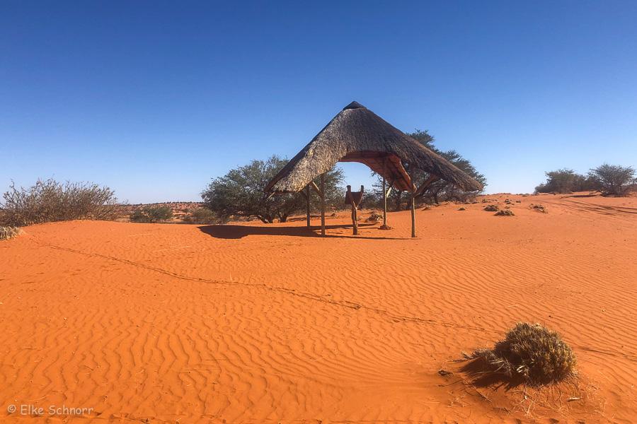 2019-Namibia-29-19.jpg