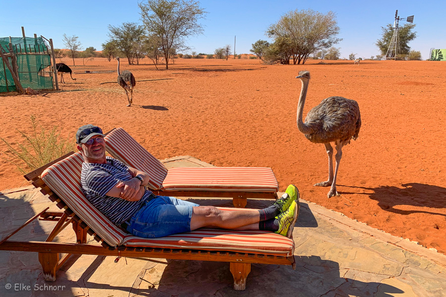 2019-Namibia-30-05.jpg