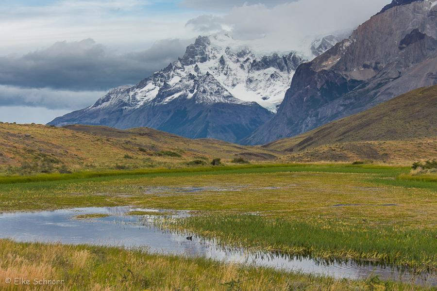 2020-Patagonien-26-06.jpg