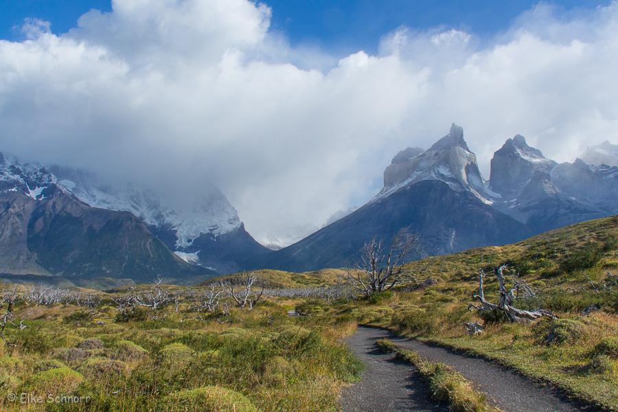 2020-Patagonien-27-14.jpg