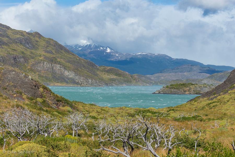 2020-Patagonien-27-21.jpg