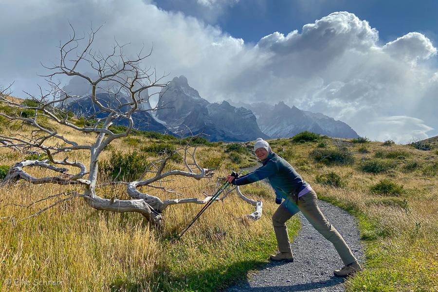 2020-Patagonien-27-27.jpg