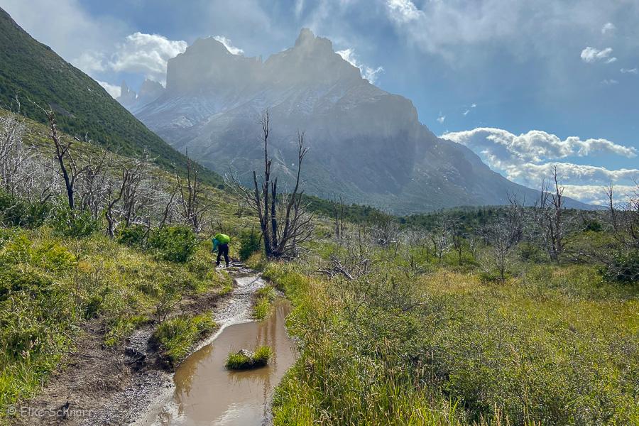 2020-Patagonien-28-08.jpg
