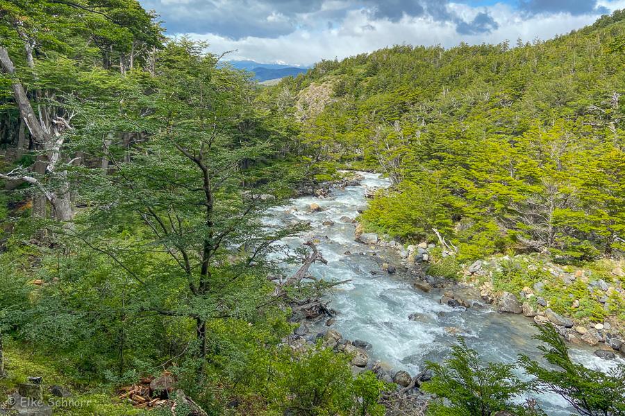 2020-Patagonien-28-10.jpg