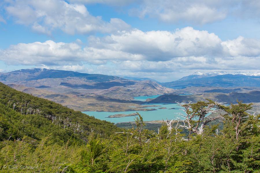2020-Patagonien-28-16.jpg