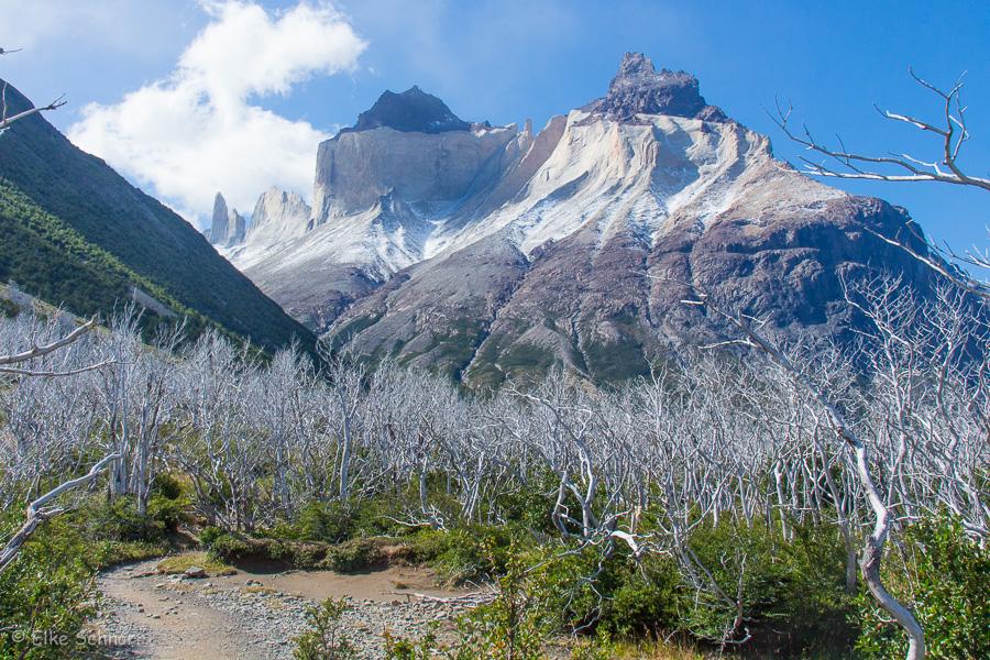 2020-Patagonien-28-25.jpg