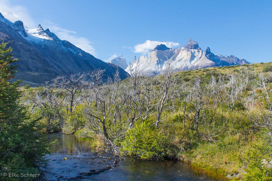 2020-Patagonien-28-27.jpg
