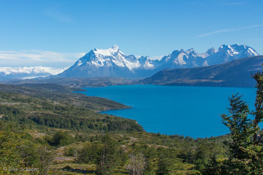 2020-Patagonien-29-19.jpg