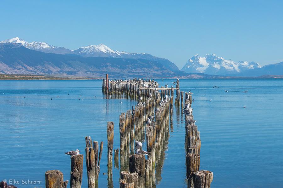 2020-Patagonien-29-23.jpg