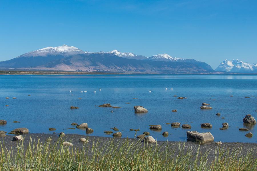 2020-Patagonien-29-26.jpg
