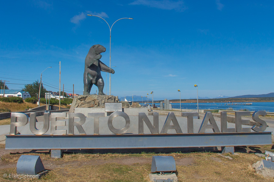 2020-Patagonien-29-29.jpg